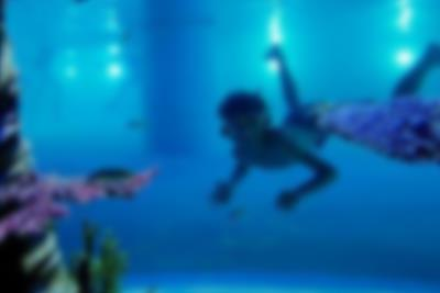 A boy dives in the cave pool at Lalandia in Billund